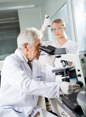 Male Scientist Using Microscope In Lab