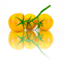 Three fresh yellow tomatoes on a white background