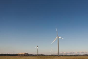 windmills in fields