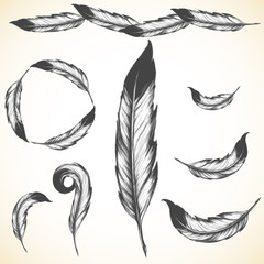 native american symbol: airy bird feather