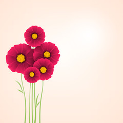 Beautiful flowers Dahlias. Element for design.
