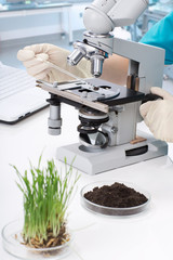 Equipment and the sample in the laboratory