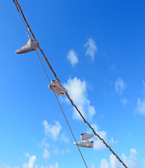 old shoes hanging from a wire