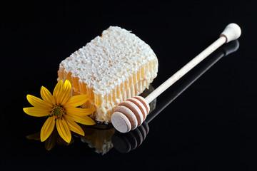 honeycomb  on black reflexive background