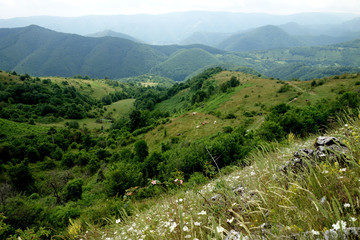 From Padureni County