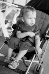 toddler boy sitting in the stroller