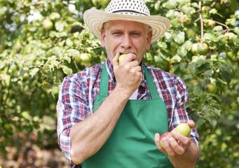 Nothing taste better than apple from our own garden
