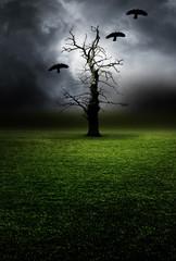 Kahler Baum mit Raben