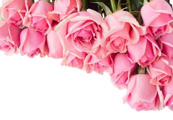 border of fresh pink  roses