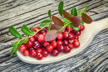 Fresh cranberries with green leaves on wooden plank
