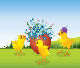 Three chicken and egg