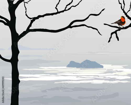 Sea gray landscape - 69999243