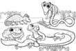 reptiles and amphibians coloring page - 70001036