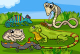 reptiles and amphibians group cartoon poster