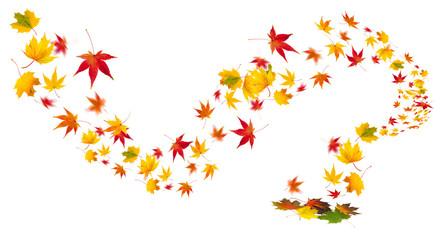 buntes Herbstlaub als Hintergrund