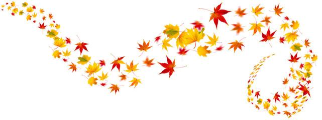 bunte Herbstblätter als Collage