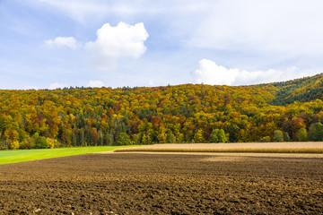 landscape near rock formation twelve apostles in Bavaria