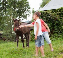 Children stroking horse