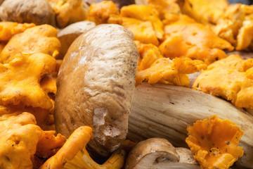 Funghi porcini e finferli in un cestino su un tavolo