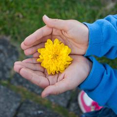 Kind mit Blüte in der - Geschenk