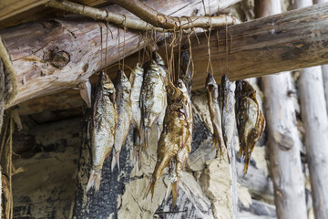fish drying on a rope