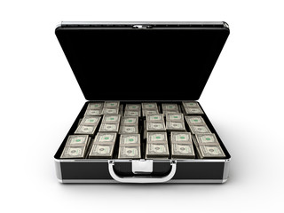 Money briefcase