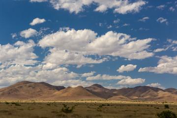 the Sonora desert in Mexico