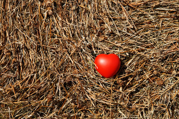 Red heart on the texture of compressed hay