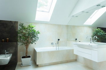 Spacious bathroom in neutral colours