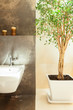 Modern bathroom details