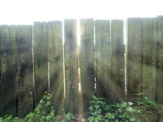 Sunlight Trough Fence