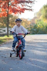 Adorable boy in the park, with his bike, learning to ride