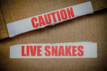 Caution Live Snakes