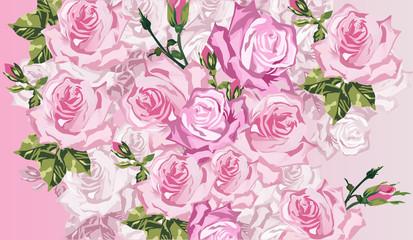 light pink rose background illustration