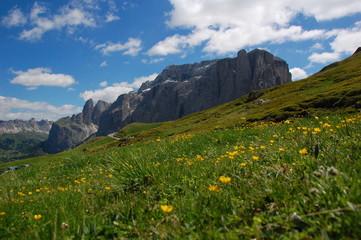 Veduta delle Dolomiti del Sella dal Passo Sella