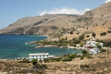 Phönix bei Loutro (Sfakia) an der Südküste Kretas
