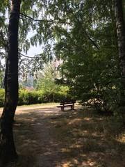 одинокая скамейка в парке