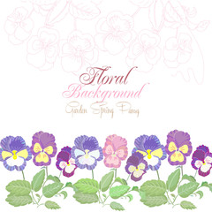 Floral Background with spring pansies