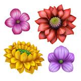 Fototapety flower illustration, floral clip-art isolated on white