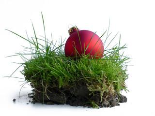 rote Weihnachtskugel im Gras, ein Stück natur zu Weihnachten