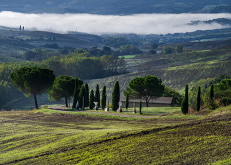 tuscan landscape and fog