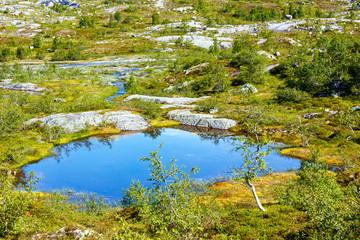 Summer mountain lake (Norway)