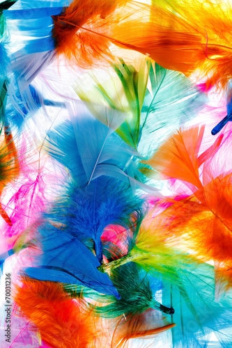 Canvas Textures Colorful feathers