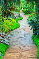 Path in the garden
