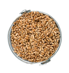 pearl barley in a bucket