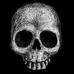 Hand drawn skull