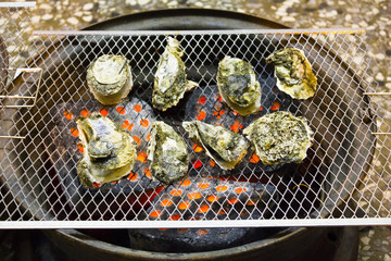 Oysters on the Grill in outdoor