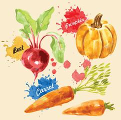 watercolor illustration of vegetables