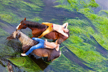 Two friends have a rest,  on grain of horses  in water