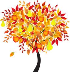 Fall Tree Vector, Apple Tree, Pear Tree